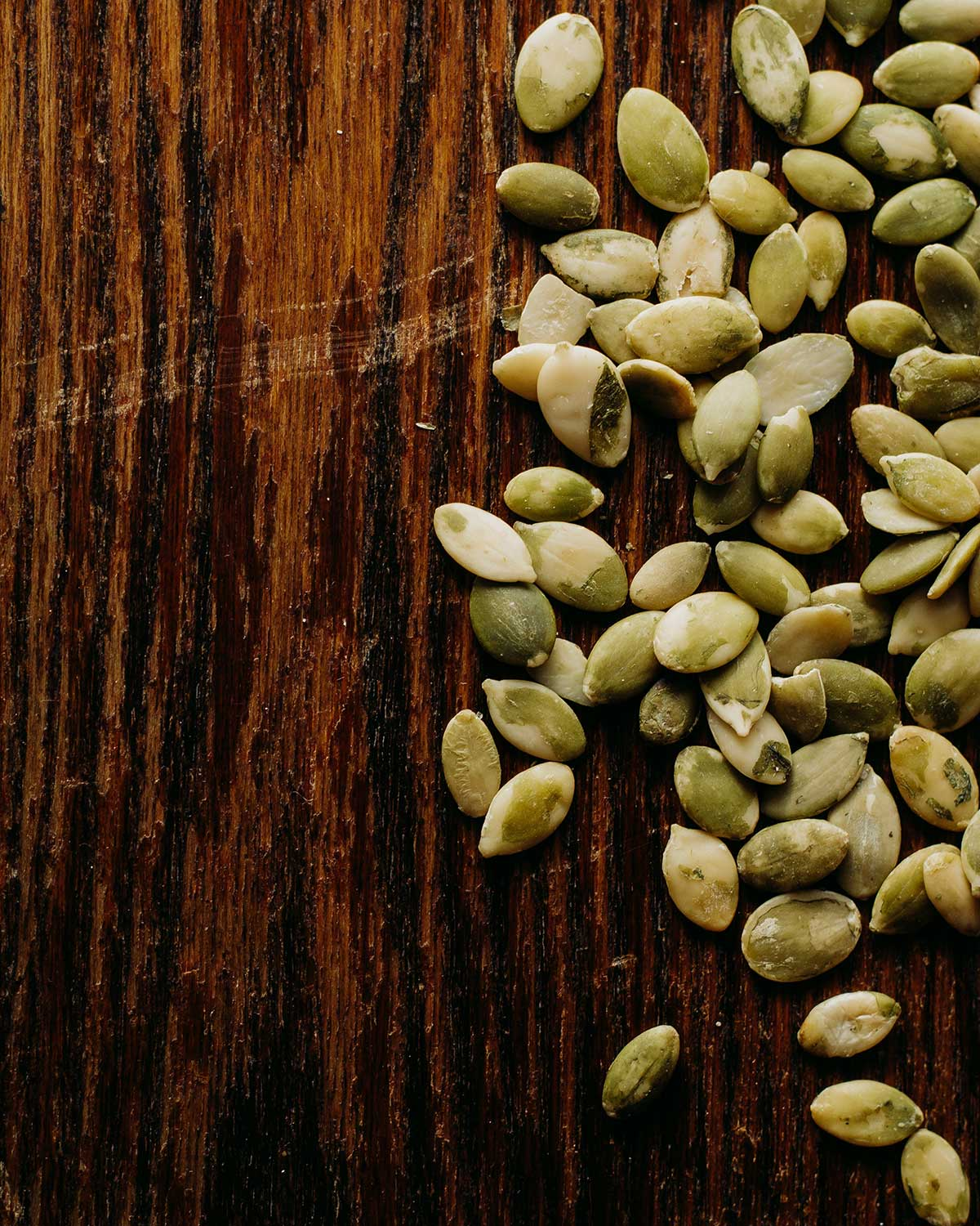 Your Favorite Seed Companies | Homesteaders of Michigan