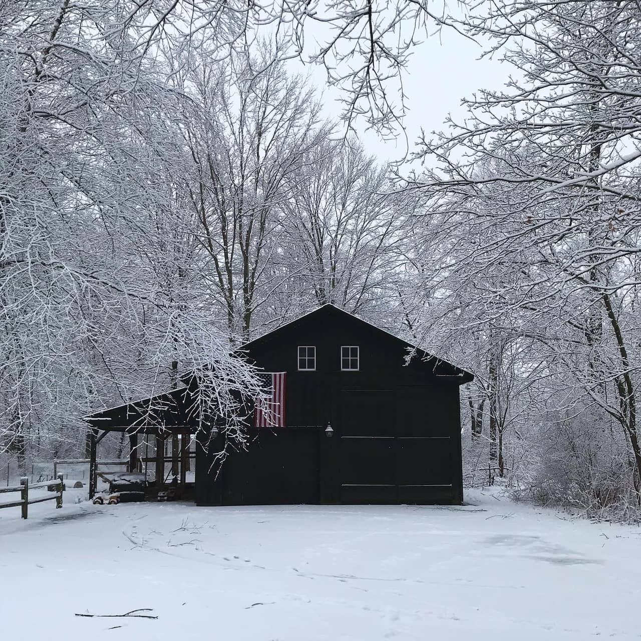 Black Barn Farm   Homesteaders of Michigan Feature