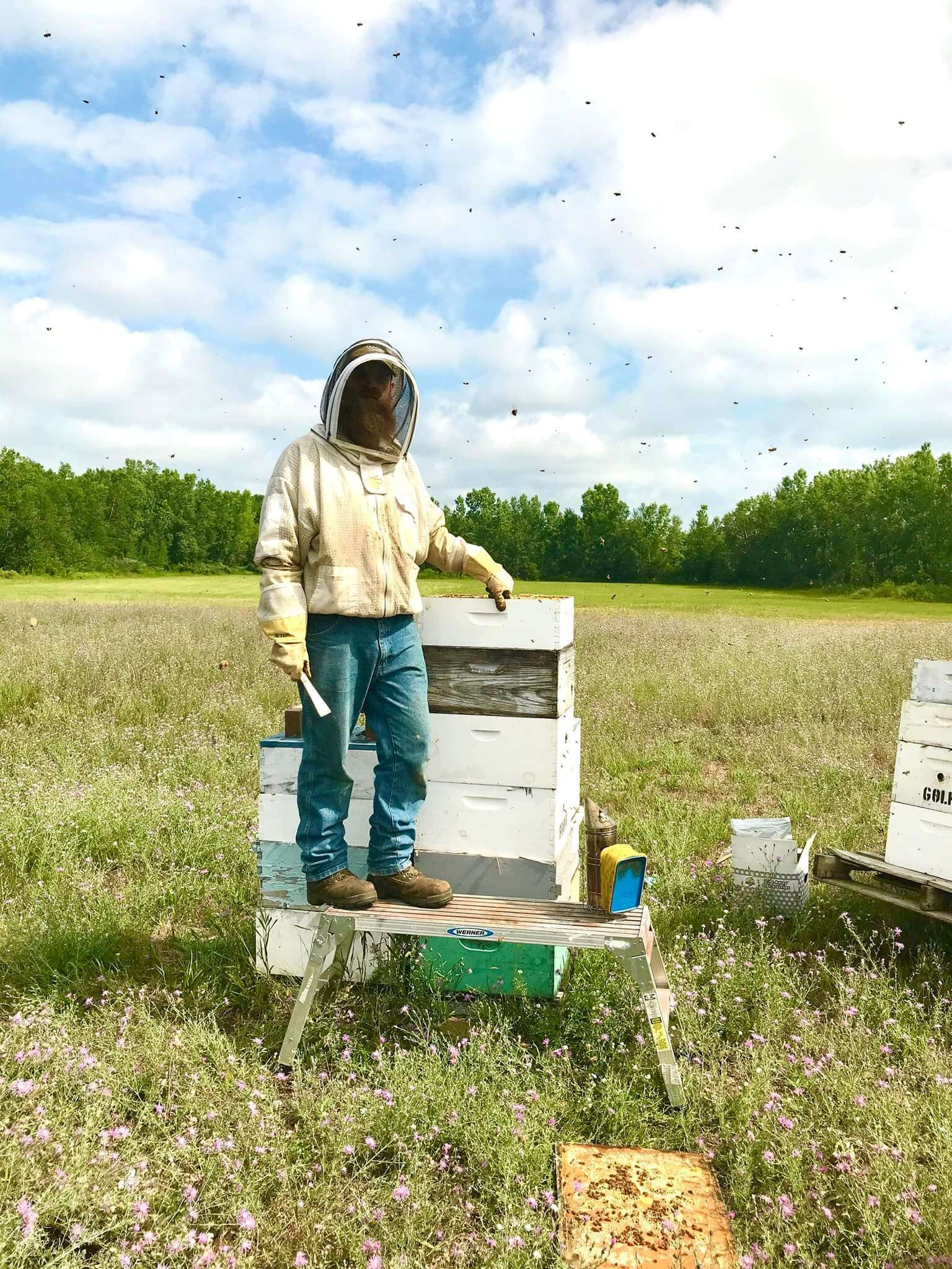 Veteran-Owned Farms and Homesteads in Michigan | Hickory Tree Farm Apiaries