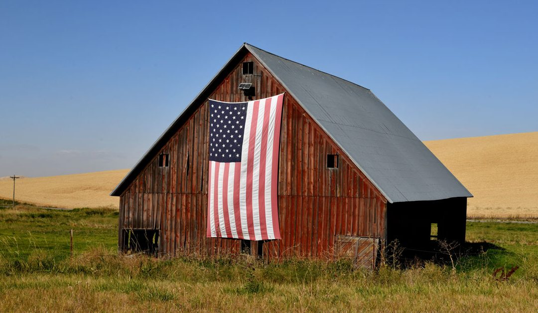 Veteran-Owned Farms and Homesteads in Michigan